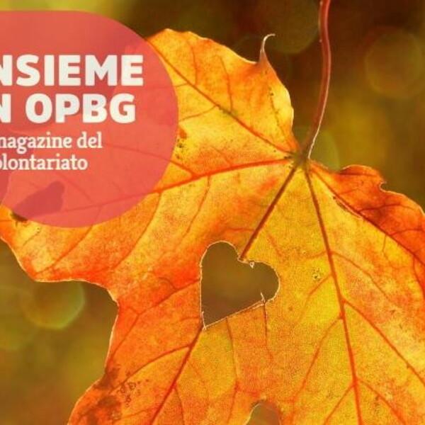 Il volontariato…in rete: il numero di settembre di Insieme in OPBG