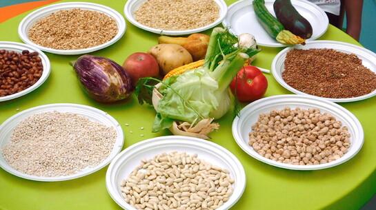 A scuola di salute: la giornata alimentare