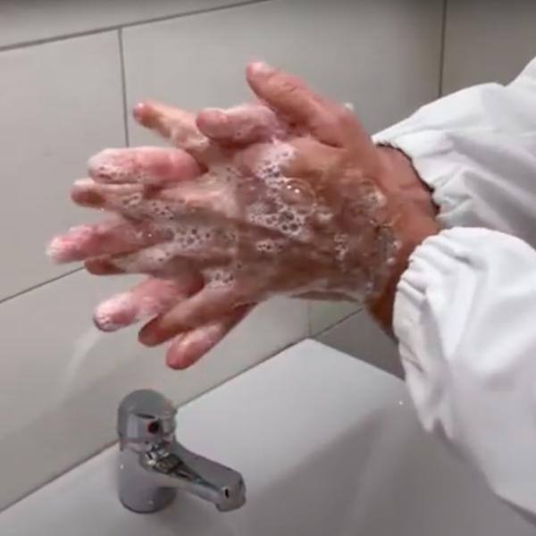 Nuovo Coronavirus: come lavarsi correttamente le mani a cura del dott. Gaetano Ciliento