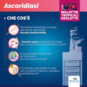 Ascaridiasi